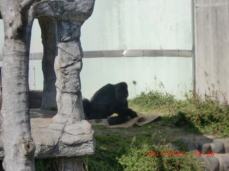 動物園 004.jpg