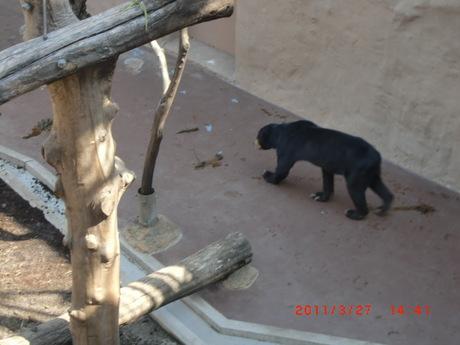 動物園 007.jpg